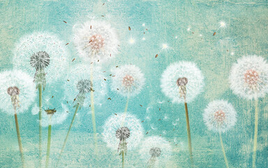 Obraz  3d picture dandelions on a green background - fototapety do salonu