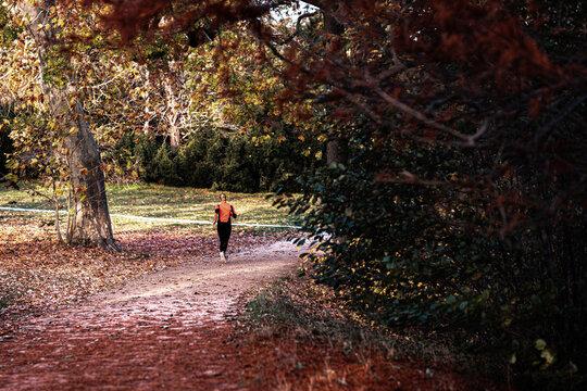 Joggerin auf einem Weg im Park mit Herbststimmung
