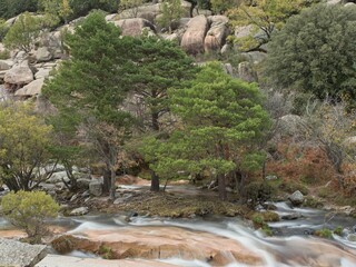 Trees next to the silk waters of the river in La Pedriza