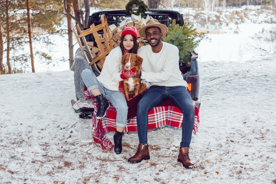 Multiracial couple are sitting in the trunk of a car with a dog. A couple of lovers came to the forest for a Christmas tree.