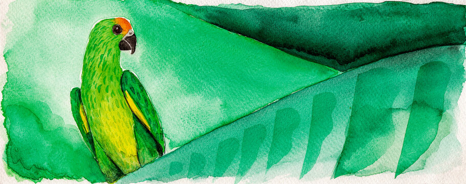Portrayal of a colorful parrot perched on green banana tree leaves. Watercolor painting.
