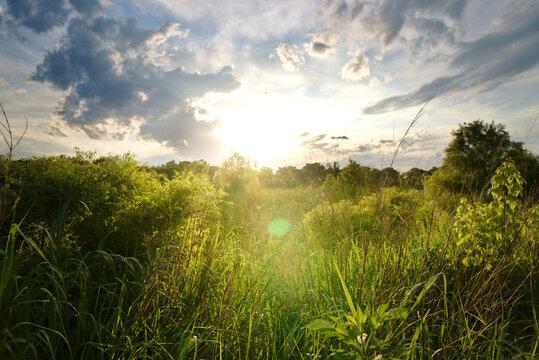 The sun sets over a grass field in Carrollton, TX near Dallas.