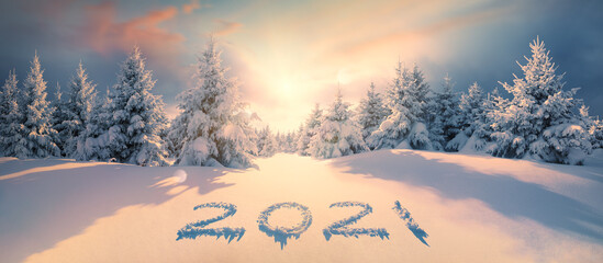 2021 on snow in winter forest
