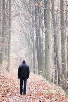 Mature or senior man walking alone in a forest in autumn or winter