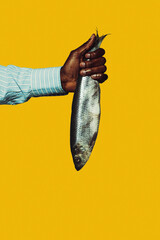 Fish. Modern art collage in pop-art style. Hands isolated on trendy colored background with copyspace, contrast. Modern design with copyspace for advertising. Trendy colors.