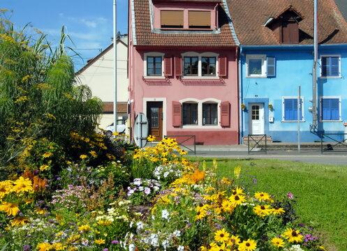 Ville de Sarreguemines, maisons et leurs façades colorées en centre ville, massif de fleurs jaunes en premier plan, département de la Moselle, France
