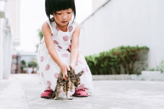 Asian little girl and sick stray cat