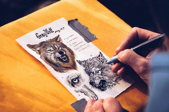 Wolf biological study