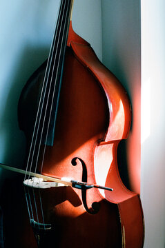 Double bass with sunlight on it