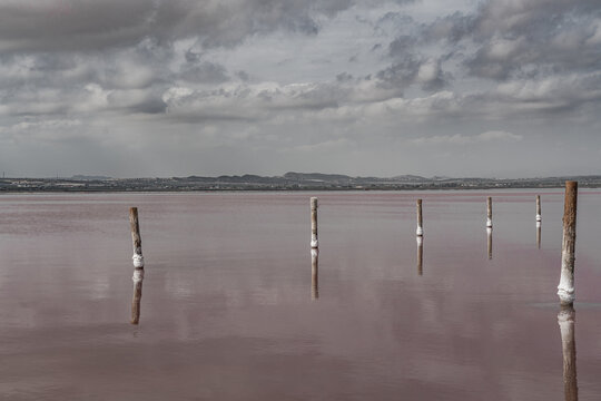 Wooden posts in the pink salt lake with reflection on water from clouds, Laguna Rosa