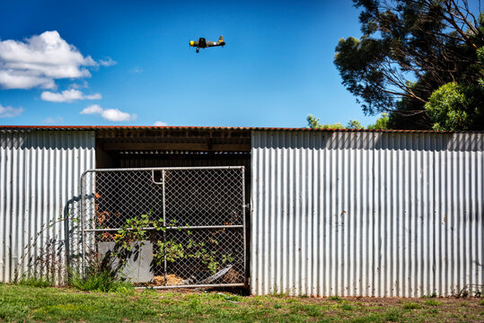 A vintage aircraft flying over a silver corrugated shed with a tin roof and metal gate overgrown with vine against a blue sky with clouds