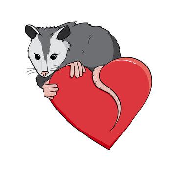 possum on a heart