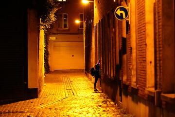 Antwerp street photography lockdown 2 Christmas  Fotomurales