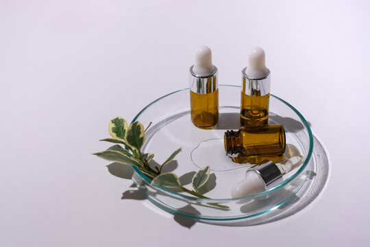 Natural skin care product with dropper bottle and herb on white background. Beauty and cosmetic concept