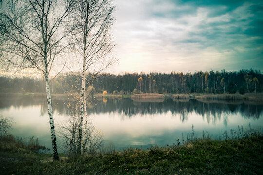 Late Autumn Landscape