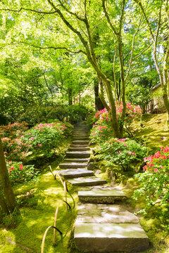 A sun dappled view of stepping stones graduating through a Japanese style garden