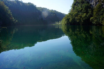 The water surface of Plitvice Lakes, in which fish are reflected