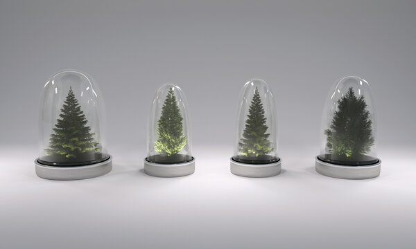 Christmas trees in glass covers on gray background. 3D illustration