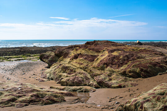 Vendée, FRANCE, green and brown and yellow rocks resembling camouflage on a beach in the town of Bretignolles Sur Mer.