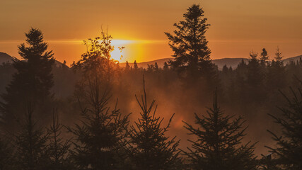Mglisty wschód słońca w Bieszczadach