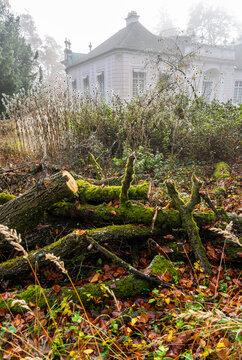 Herbstspaziergang im Schlosspark in München - vermooste Bäume und Gebäude im morgendlichen Nebel