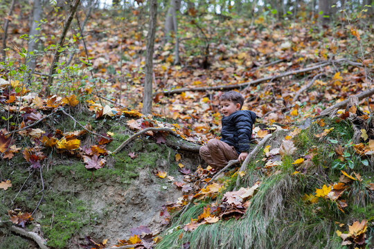 Beautiful little boy having fun in a forest