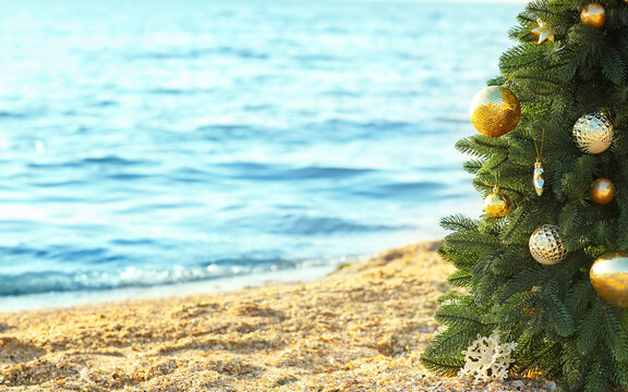 Decorated Christmas tree on sea beach. Vacation concept