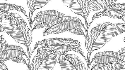 Botanical seamless pattern, hand drawn line art banana tree on white