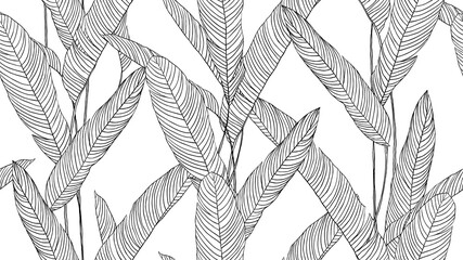Botanical seamless pattern, hand drawn line art tropical plant on white