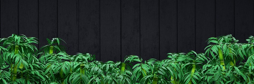 Vertical matte black boards wallpaper with bamboo plants.