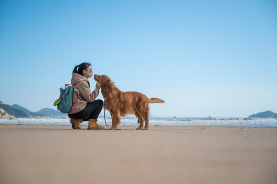 Golden Retriever accompanies its owner on the beach