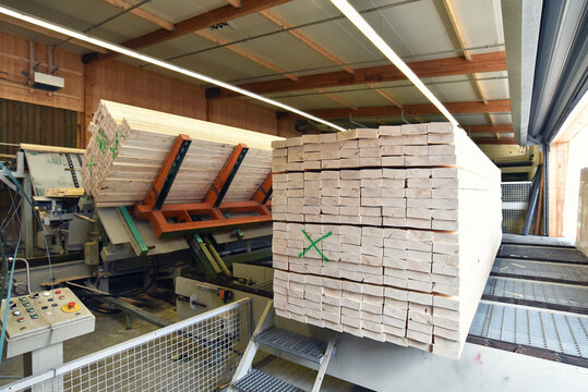 woodworking/ sawmill: production and processing of wooden boards in a modern industrial factory