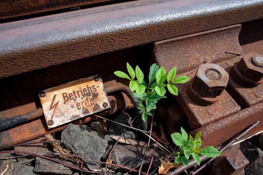 Hochspannung Betriebserde an Bahngleis mit Unkraut