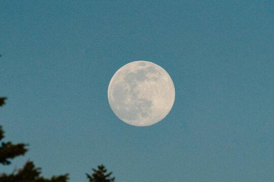 A full worm moon rises across a blue sky at twilight
