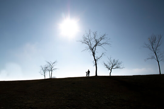 Silhouette of a mother and daughter on a hill near a tree