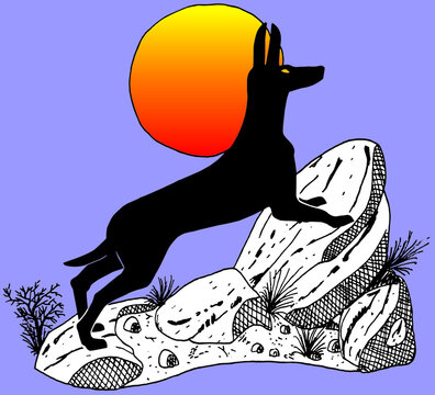 Colored illustration of a wolf in ancient Egypt style over stones with red sun behind it, in comics style. Vector illustration.