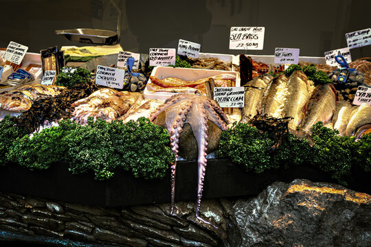 Varity of seafood including octopus on display in British market with signs showing kind and price on rock display with curly parsley