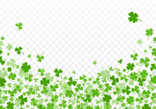 Shamrock or clover leaves flat design green backdrop pattern vector illustration isolated on transparent background. St Patricks Day shamrock symbols decorative elements.