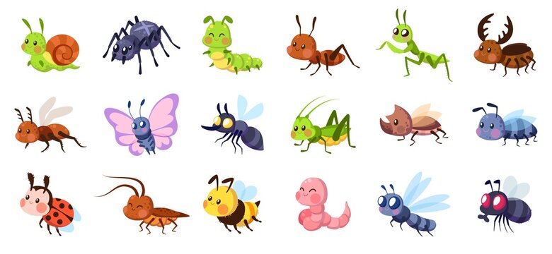 Cute cartoon insects. Funny little insect characters set baby snail, smile spider and caterpillar, little ant, colorful butterfly and comic dragonfly, vector isolated collection