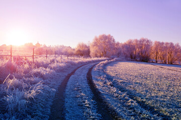 Winter landscape with frozen trees at sunrise.