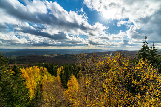 Autumn forest in the Harz mountains