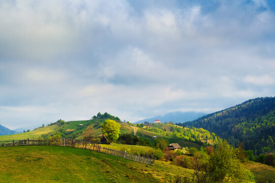 Spring gold morning rural landscape in the Mizhhiria, Carpathian mountains.
