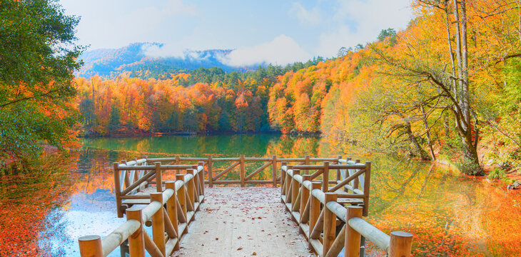 Autumn forest landscape reflection on the water with wooden pier - Autumn landscape in (seven lakes) Yedigoller Park Bolu, Turkey