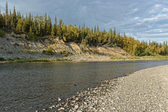 Summer river landscape.