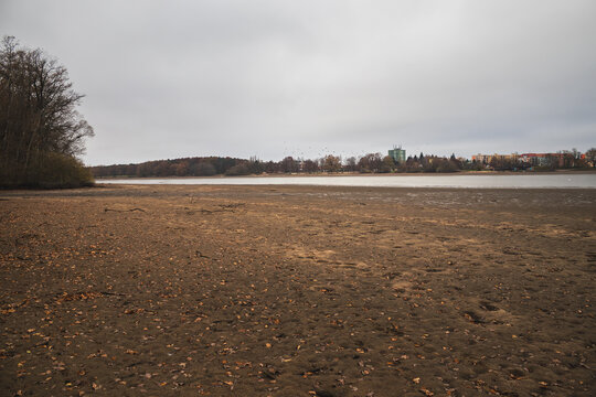 Empty drained pond, autumn, Pond Svet, Trebon Czech republic