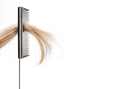 Haarsträhne in einem Stilkamm vor weißem hintergrund