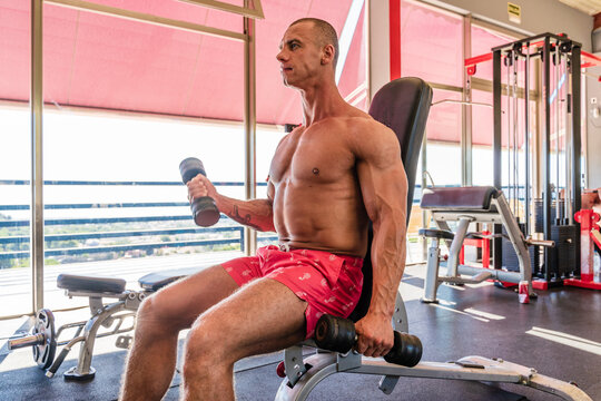 Low angle of shirtless male bodybuilder doing bicep curl exercises with dumbbells while sitting on bench in modern gym and looking away