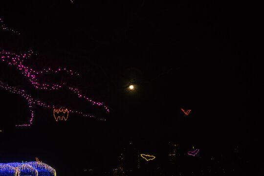 Moon and Bat Christmas