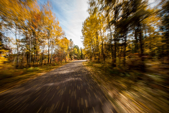 Scenic view of country road passing through autumn forest