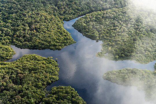 Beautiful aerial view to flooded green Amazon rainforest and river